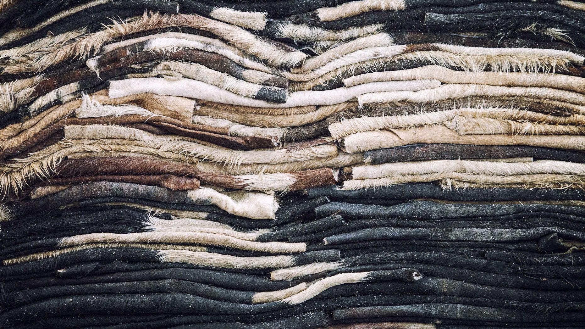 Lavorazione pelli grezze